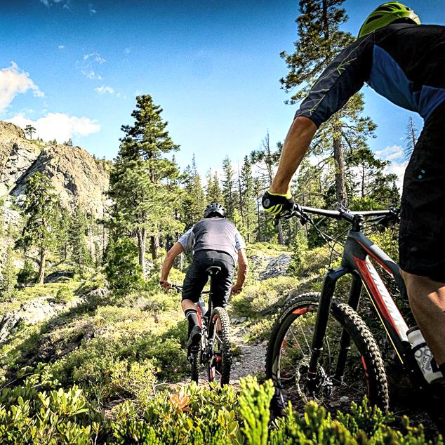 Polnovzmetena XC in Trail kolesa
