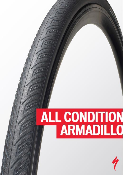 all-conditions-armadillo